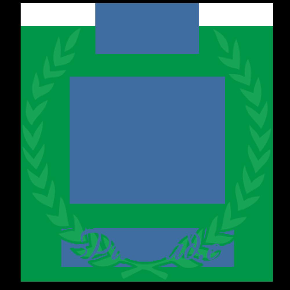 Pulmad.ee Aasta Tegija 2017