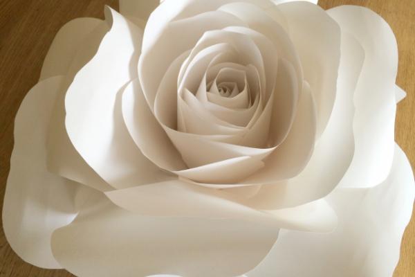 Suured (kuni 90 cm läbimõõduga) paberroosid pulmakoha (fototsooni) kaunistamiseks.