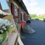 Pulmapeo lilled