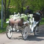 kahekohaline valge kaarik koos hobuse ja kutsariga, pidulik ja dekoreeriud.