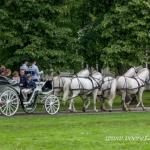 Voore Tallide nelja valge hobuse rakend